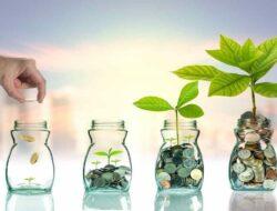3 Jenis Investasi untuk Pemula Kayak Kamu