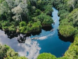 Dukungan Perusahaan Sukanto Tanoto Memulihkan Alam Semenanjung Kampar