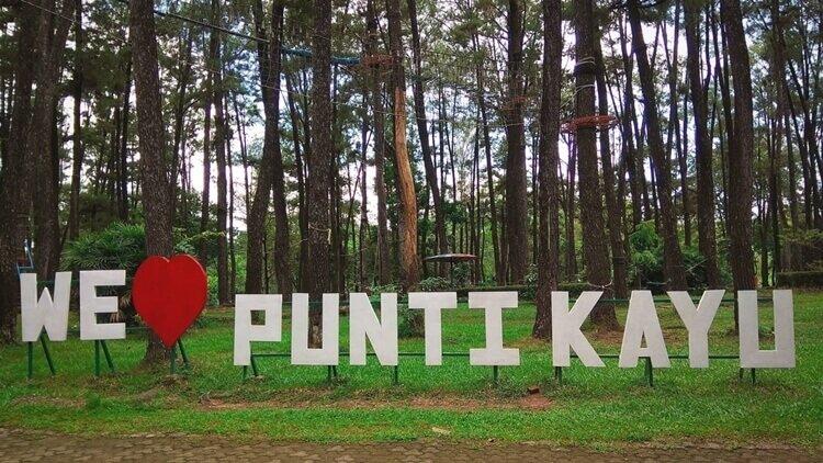 destinasi wisata alam hutan punti kayu palembang