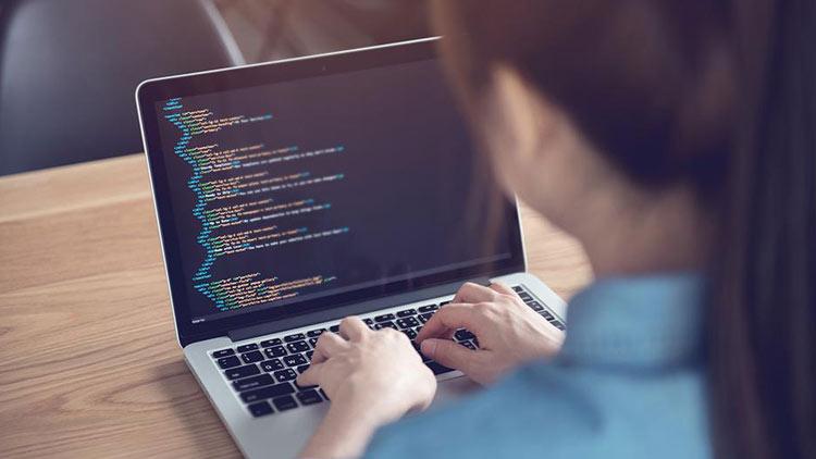 kerja sampingan untuk mahasiswa yang menjanjikan sebagai web developer