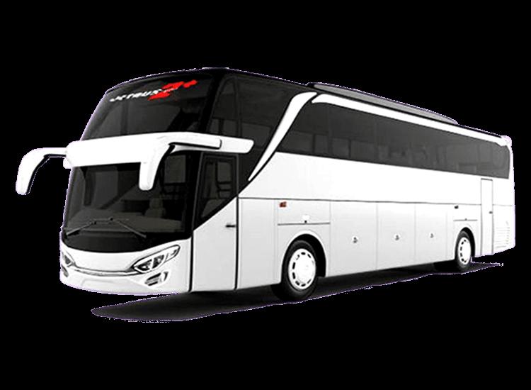 daftar jenis bus pariwisata secara umum yang nyaman digunakan untuk liburan bersama rombongan