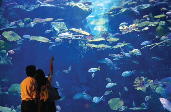 tujuan destinasi dan tempat wisata di kuala lumpur malaysia paling romantis dan ngehits 2020