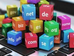 Apa itu Domain? Inilah Pengertian, Jenis dan Fungsinya!