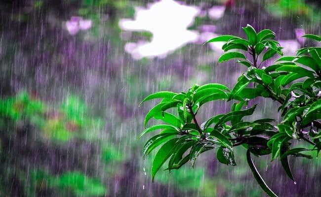 doa minta turun hujan