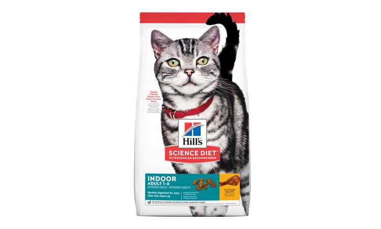 makanan kucing maine coon