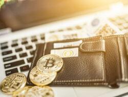 5 Cara Memulai Bisnis Cryptocurrency Untuk Pemula dan Jenis-Jenisnya