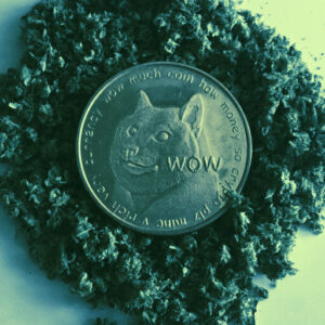 What the Hell Is Doge Day—And Will It Really Send Dogecoin to $1?