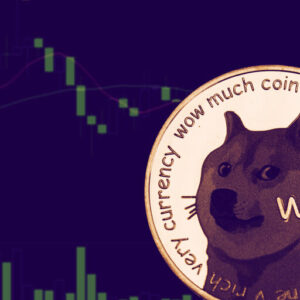 Dogecoin Spikes by 225% to Become Fifth Biggest Crypto by Market Cap