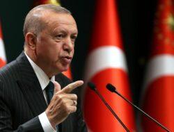 Kumpulkan Kekuatan Internasional Tanggapi Serangan Zionis Israel, Erdogan Desak Nigeria Tunjukkan Solidaritas
