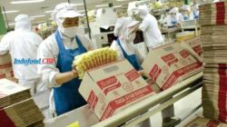 Lowongan Kerja PT Indofood CBP Sukses Makmur Tbk Juli 2021